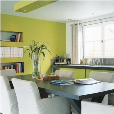 Couleurs peinture cuisine association couleurs blanc et - Peinture cuisine vert anis ...