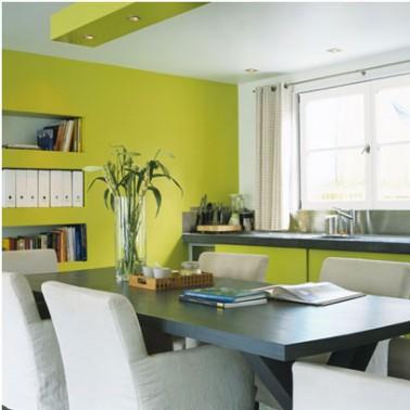 Peinture cuisine et meubles couleur vert anis for Peinture cuisine vert