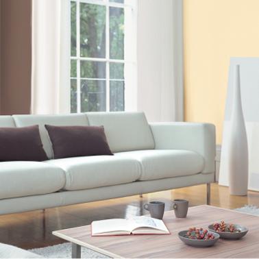 D co salon avec peinture couleur bisque et chataigne for Peinture pour salon