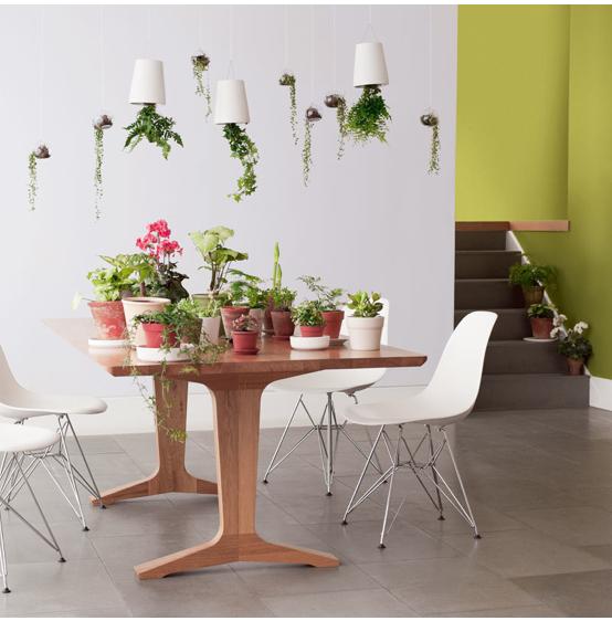 Association couleur avec le vert dans salon chambre cuisine for Peinture harmonie des couleurs