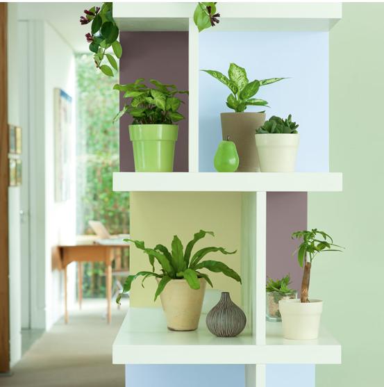 Association couleur avec le vert dans salon chambre cuisine - Couleur de peinture pour salle a manger ...