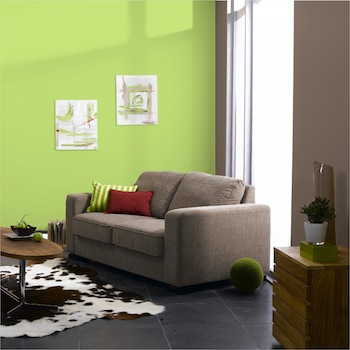 salon peinture mural harmonie couleur vert et taupe. Black Bedroom Furniture Sets. Home Design Ideas