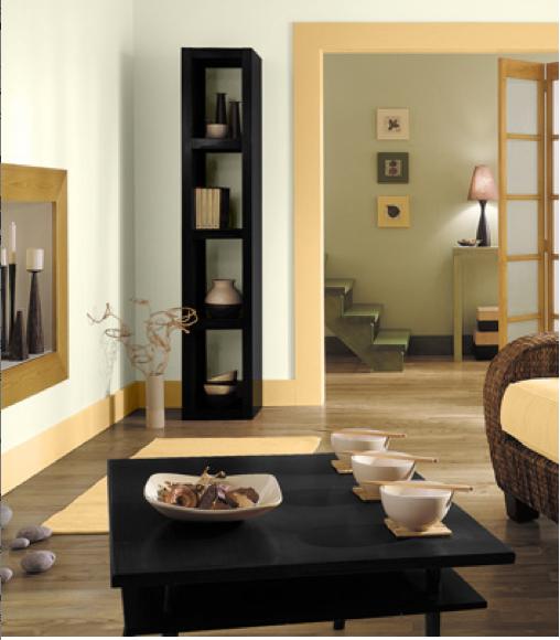 peinture couleur naturelle pour d coration de salon. Black Bedroom Furniture Sets. Home Design Ideas