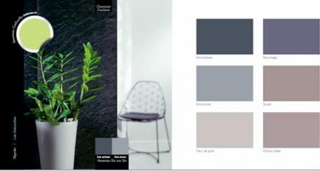pour la décoration d'un salon d'une chambre ou d'une entrée, harmonie de couleurs et peinture gris, taupe à associer à un vert anis pour le contraste sur le tapis, un vas, ou des rideaux à partir du nuancier peinture Ripolin