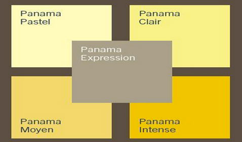 Nuancier peinture couleur jaune clair et intense plus un taupe de la palette Panama de Dulux Valentine