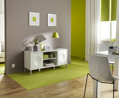D Co Salon Peinture Couleur Taupe Et Vert Anis