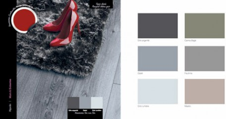 decoration salon au sol parquet chene gris, tapis acrylique gris chine, peinture murale gris souris