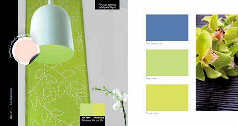 Couleurs decoration maison bleu et vert anis plus nacre for Decoration maison vert anis