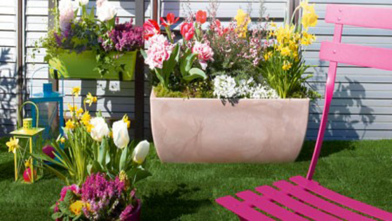 La plantation des bulbes de printemps c 39 est en octobre for Decoration jardin printemps