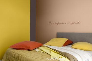 Couleurs peinture chambre jaune safran ocre rouge taupe - Couleur taupe chambre ...