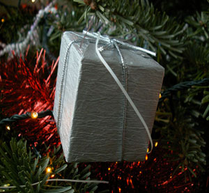 Faire paquet cadeau no l en kraft blanc et pompon rouge - Paquet jardin deco noel nancy ...