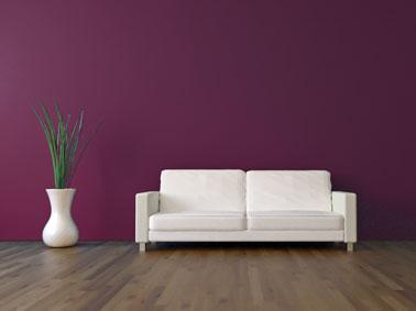 Peinture salon couleur prune avant sous couche julien - Peinture couleur bordeaux ...