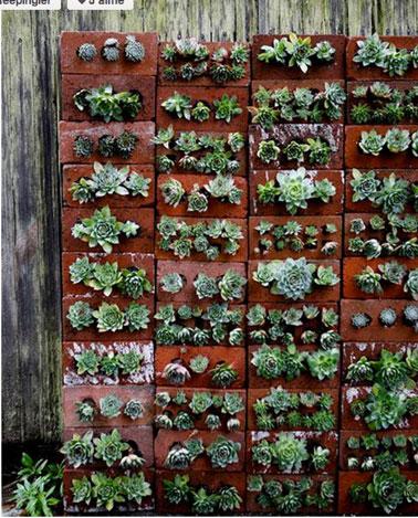 Aménagement d'un jardin sur balcon réalisé avec un mur de briques percées pour accueillir culture plantes grasses