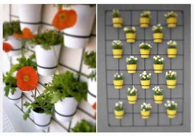 Deux idées compositions pour aménager un espace verdure sur le balcon. Unité de couleur pour chaque composition