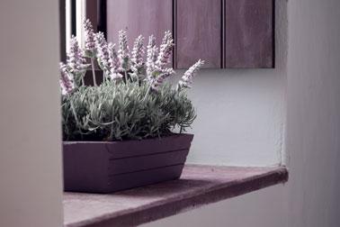 Pas très déco la jardinière en plastique marron caca d'oie ! Alors, on la personnalise avec un coup de peinture pour plastique couleur prune comme celle-ci placée dans l'entrée de la maison.