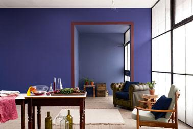 Couleur peinture salon. Décoration salon dans une harmonie de bleus où les meubles en bois ciré signent l'esprit d'authenticité