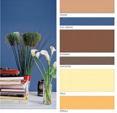 nuancier peinture Face à la large palette de couleurs aujourd'hui disponible dans les grandes surfaces de bricolage, il est souvent difficile de se décider du premier coup pour une teinte. Et si le nuancier permet de faire une présélection, de Ripolin. couleurs gris, vert jade,mandarine, marron