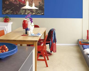 la peinture couleur rouge réhausse les couleurs gris et bleu de cette cuisine ouverte sur salon