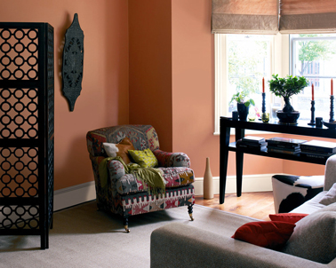 peinture salon couleur ocre rouge autour de teintes terre. Black Bedroom Furniture Sets. Home Design Ideas