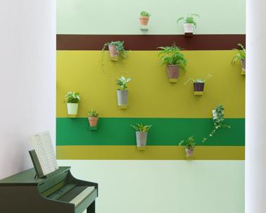 La déco d'une entrée de maison vue comme un jardin suspendu avec bandes de peinture dans des nuances de vert et une composition de plantes d''intérieur