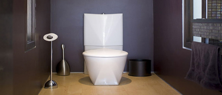 Peinture wc id es couleur pour des wc top d co for Decoration maison wc design