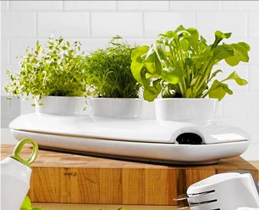 jardini re sos plantes aromatiques pour la cuisine d co cool. Black Bedroom Furniture Sets. Home Design Ideas