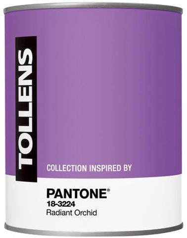 Pot peinture couleur radian Orchid By Pantone de Tollens en vente chez Castorama