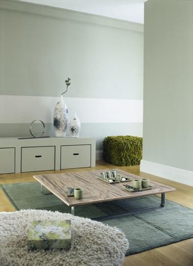 association couleur peinture salon id e inspirante pour la conception de la maison. Black Bedroom Furniture Sets. Home Design Ideas