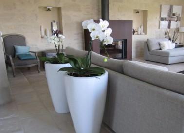 idee decoration et peinture salon avec la couleur lin meubles bois et matières naturelles