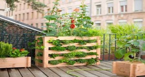 Des idées pratiques et gain de place pour faire un potager sur le balcon : potager dans des sacs de toile à poser ou suspendre, potager vertical en bois...