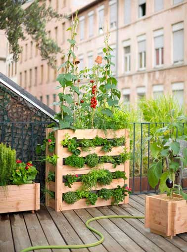 un potager sur balcon c 39 est facile faire deco cool. Black Bedroom Furniture Sets. Home Design Ideas