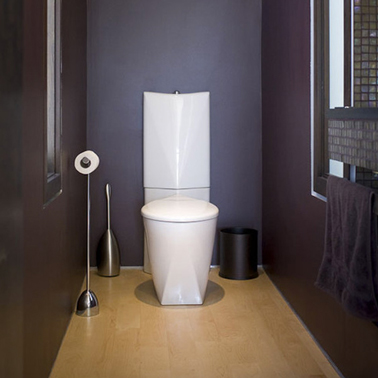 Peinture wc id es couleur pour des wc top d co for Photos de toilettes design