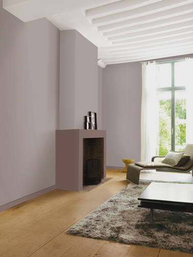 Interieur maison couleur taupe for Idee deco mur interieur