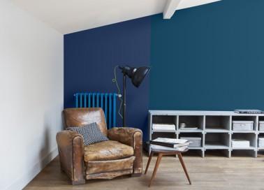 peinture 70 couleurs pour tout repeindre dans la maison. Black Bedroom Furniture Sets. Home Design Ideas