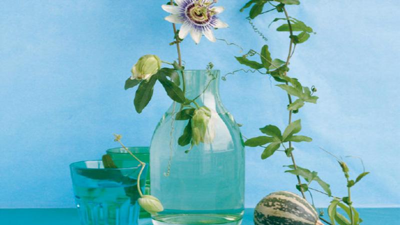 Transparence, la peinture à effet essuyé de Maison Déco, nuancier 13 couleurs pastel à appliquer à l'éponge, au chiffon ou au pinceau large