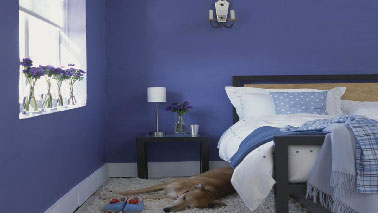 Peinture les couleurs chambre adulte id ales pour les murs - Deco chambre adulte bleu ...