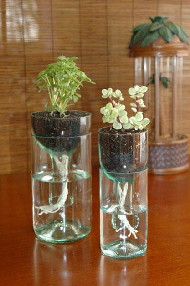 remplissez de terre la partie haute de la bouteille, plantez une plante miniature puis posez l'ensemble sur la partie basse du nouveau vase après l'avoir rempli au 2/3 d'eau. Les racines étant attirées par l'eau, les arrosages et la lumière feront le reste