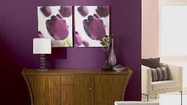 Une photo qui illustre bien la manière de tirer partie de la puissance d'une couleur aubergine sur un pan de mur du salon en association avec une teinte neutre de lin. Le dégradé de violet  et de ton bois renforce sa force tranquille pour une ambiance de style contemporain sur la base de meubles classiques. Peinture : Myrtille, Fleur de Jasmin, Figue, Soie Violette, Ebenne Collection Crème de Couleur Dulux Valentine