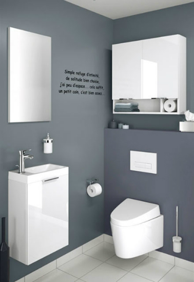 Meuble toilette design for Photos de toilettes design