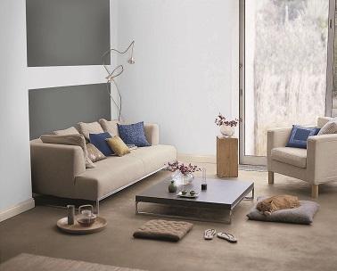 D co salon nuance de gris et taupe for Salon gris et beige
