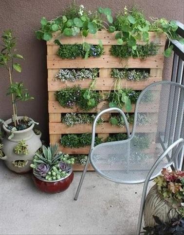 utilisez les palettes pour fabriquer un mur vgtal sur votre balcon cet amnagement ingnieux se - Fabriquer Une Jardiniere Avec Des Palettes