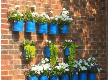 Les boites de conserve s'offrent une 2ème vie recyclées en pots de fleurs dans le jardin ou le balcon. Un coup de peinture bleue sur les boites et les fleurs sont des les pots.