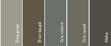 Nuancier 5 couleurs peinture terrasse bois v33 - Peinture terrasse bois ...