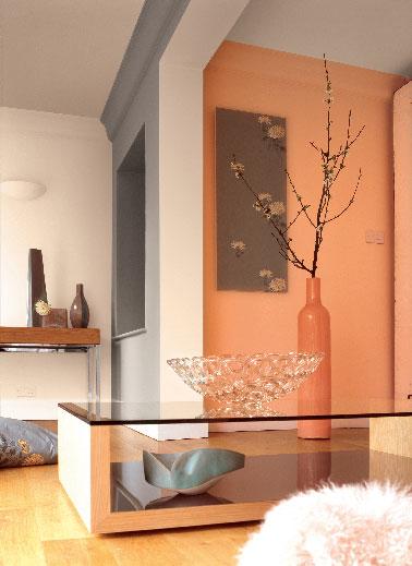 Une idée d'association  couleurs gaies et fraîche avec une peinture salon dans la gamme des teintes naturelles de orange et pêche, subtilement ponctuées de peinture grise sur un pan de murs.
