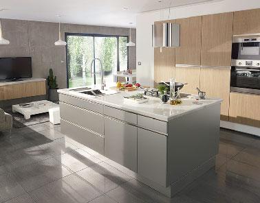 Cuisine ouverte sur salon avec lot inox design castorama - Cuisine blanche ouverte sur salon ...