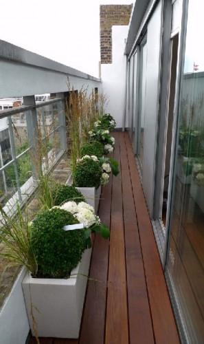 Sol balcon troit en bois et boules de buis - Amenager un balcon etroit ...