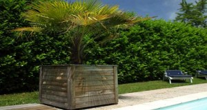 Brise vue en pin occultant pour abriter la terrasse leroy merlin - Proteger sa terrasse des regards ...