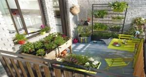 La plante de balcon d'automne est ultra-résistante et nécessite peu d'entretien. Déco Cool vous donne des idées de plantes pour aménager votre balcon adaptées à la saison