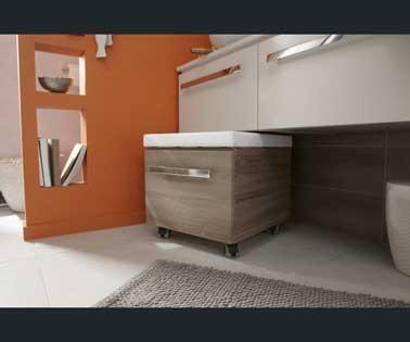 petite salle de bains assise a roulettes avec rangement. Black Bedroom Furniture Sets. Home Design Ideas