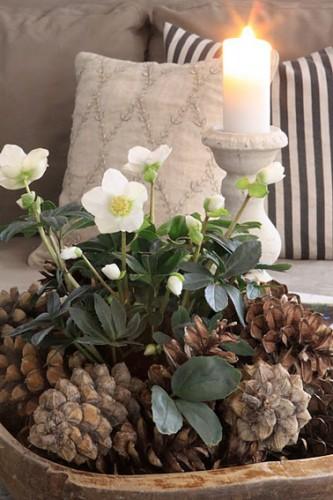Egayez votre table pour les fêtes avec une belle composition de verdure décorée de pommes de pin et de jolie roses de Noël ! Ajoutez des bougies et de petites décorations de Noël pour une table scintillante et originale